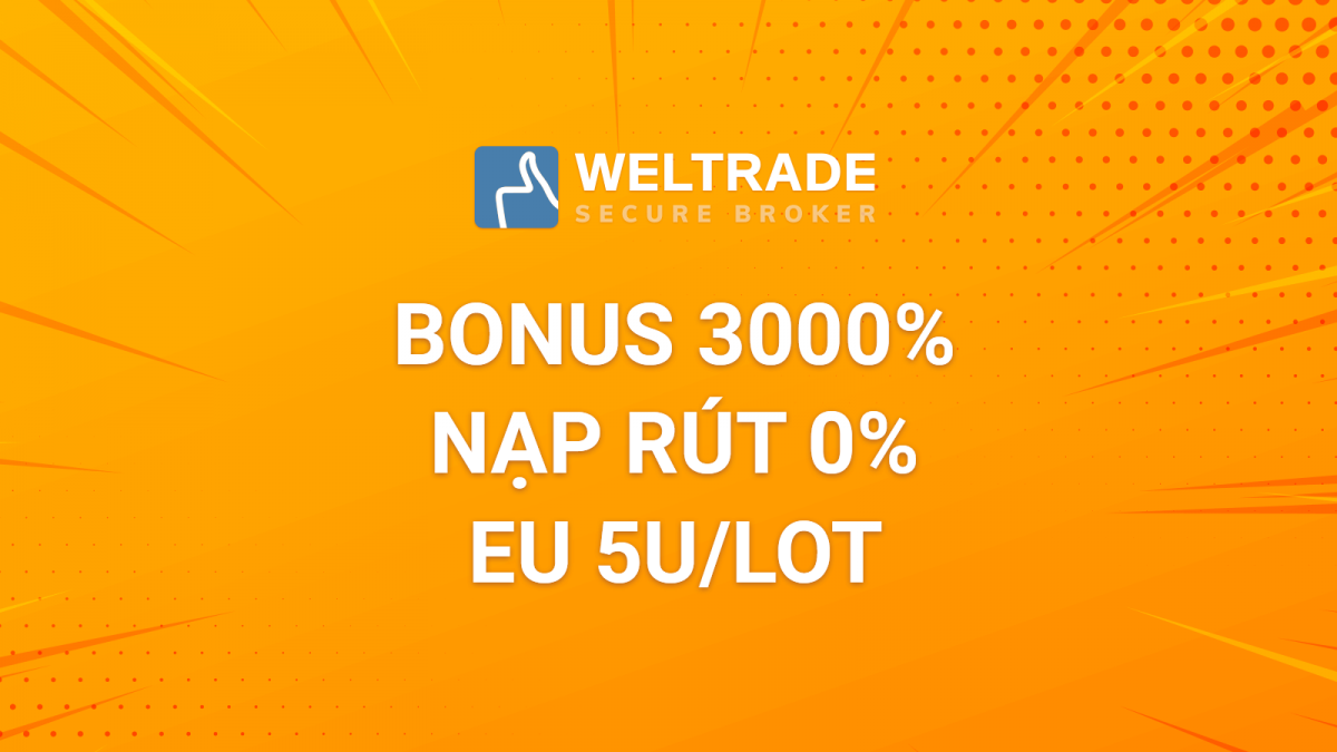 WelTrade Bonus 3000% camp 6